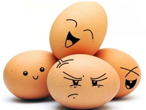 완전식품인 계란 영양소에 대해서 알아보자