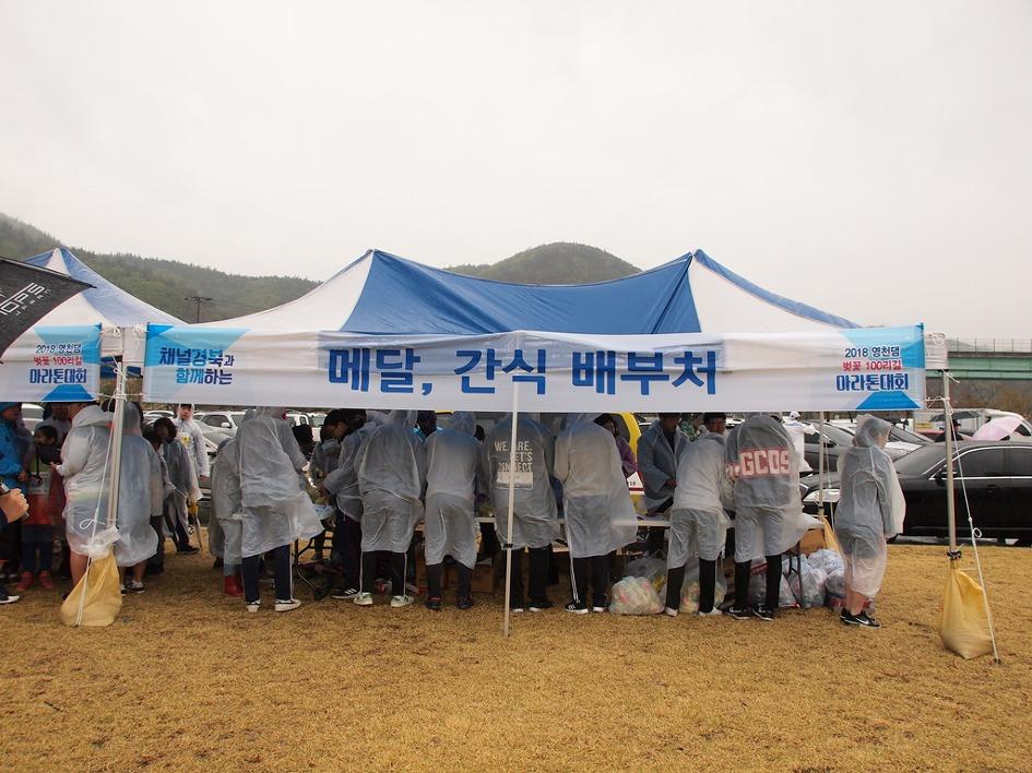 2018영천벚꽃마라톤대회 이모저모